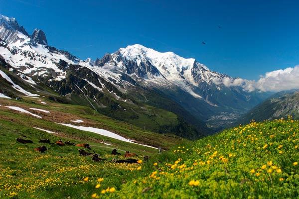 Trekking por Mont Blanc