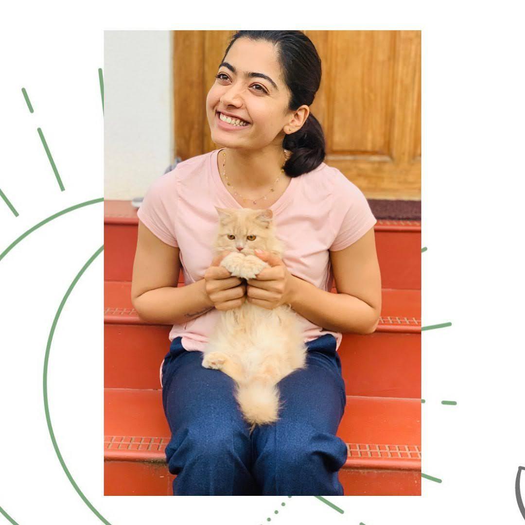 Rashmika Mandanna 9