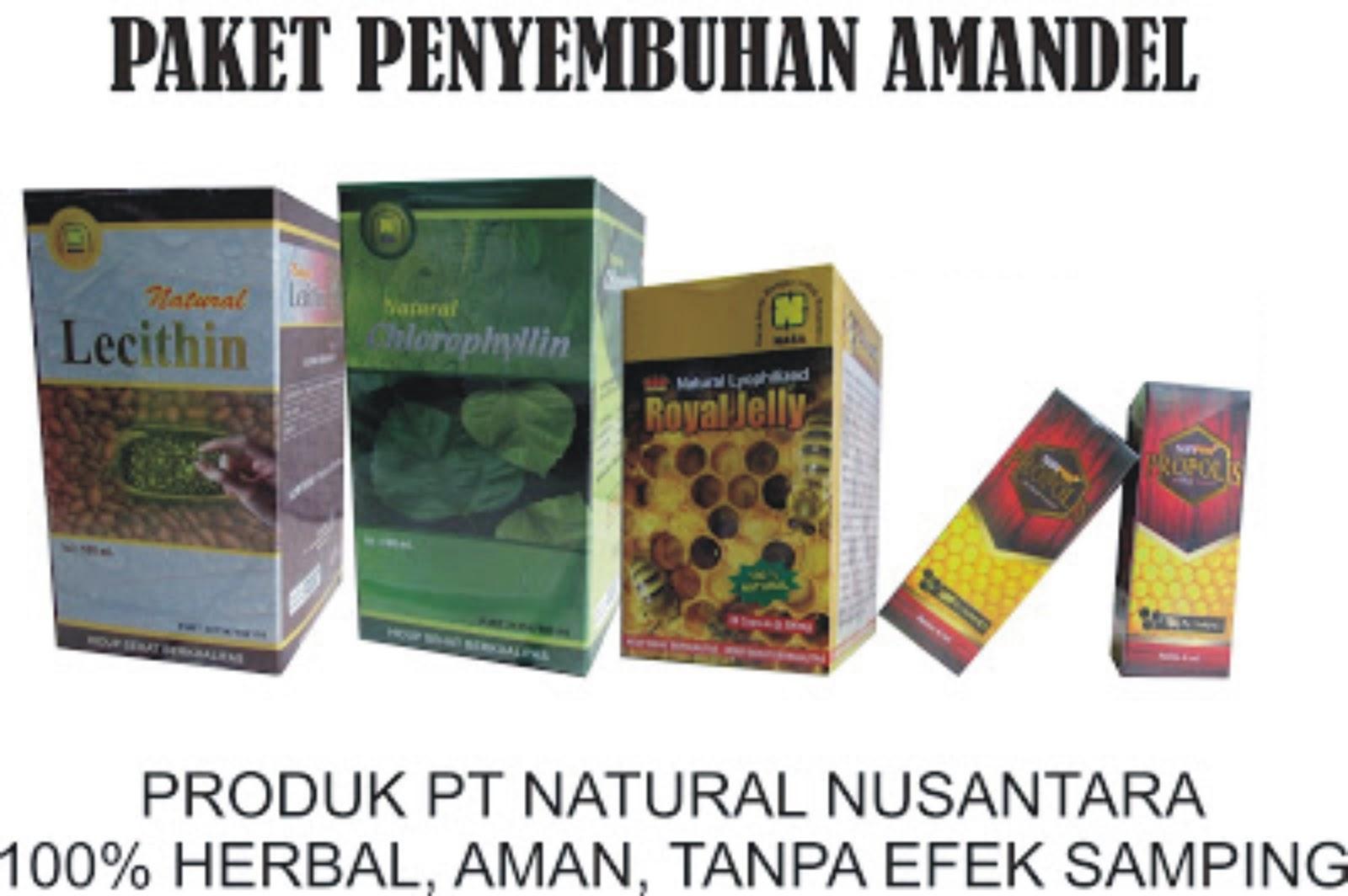 Paket Penyembuhan Amandel Nasa Natural Nusantara Sunpro Super Nano Propolis Sejatinya Merupakan Organ Pada Rongga Mulut Yang Berfungsi Untuk Mengontrol Supaya Tidak Ada Kuman Masuk Melalui