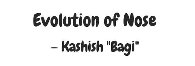 Bagi35007.com