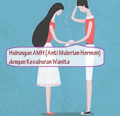 Anti-Mulerian-Hormon-AMH-Yang-Rendah-meyebabkan-sulit-hamil