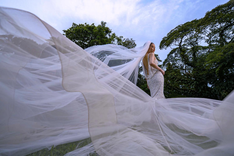 beautiful wedding veil