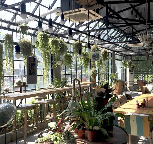 Two coffee shop for nature lovers 1