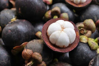 Manfaat sehat buah manggis serta imbas sampingnya  17 Manfaat Sehat Buah Manggis Serta Efek Sampingnya