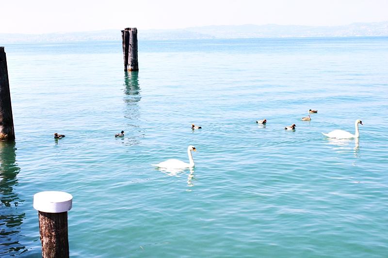 Visit Garda lake.Poseta Garda jezeru.