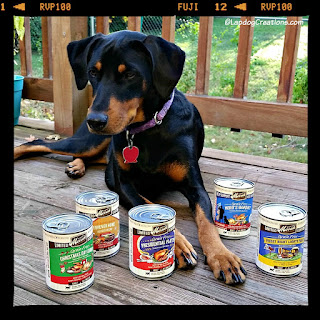 doberman mix rescue puppy merrick food