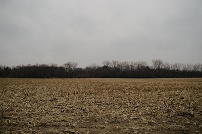 Woman Reports Phantom Chimeric Creature near Beloit, Wisconsin Planet-Today.com