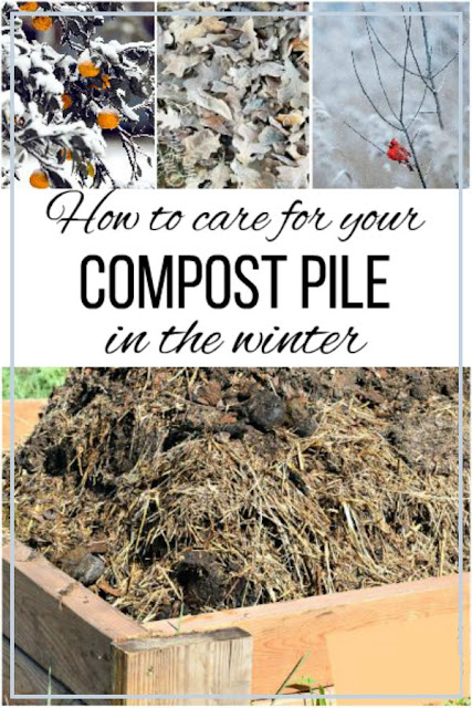 If you're new to composting, fall is the perfect time to build a new compost pile. Here's what you need, and how to maintain it over the winter.