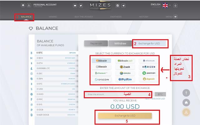 كيفية تحويل العملات إلى دولار في موقع Mizes