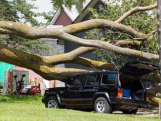 Neighbor S Tree Damages Car