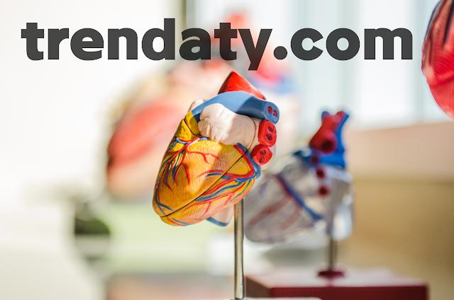نصائح للوقايه من أمراض القلب  نصائح لتجنب أمراض القلب  الوقاية من أمراض القلب بالاعشاب  ما سبب مرض القلب  علاج مرض القلب  نصائح لصحة القلب  أمراض القلب  الوقاية من تضخم القلب