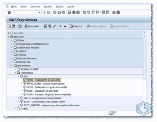 Transacción SAP SPRO - Consultoria-sap