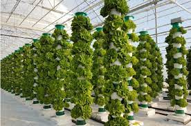 What is vertical farming in agriculture? What are the disadvantages of vertical farming?