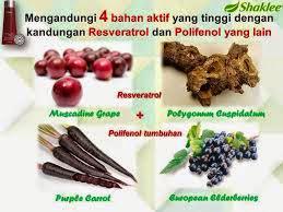 sumber resveratrol