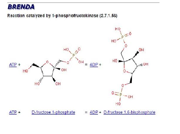 093e2d71a Saúde e a química da célula humana