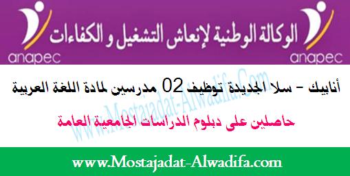 أنابيك - سلا الجديدة توظيف 02 مدرسين لمادة اللغة العربية حاصلين على دبلوم الدراسات الجامعية العامة