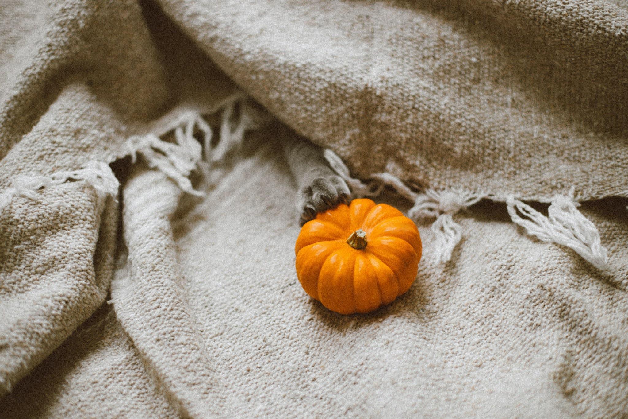 Kleine, oranje pompoen op een wit kleed.
