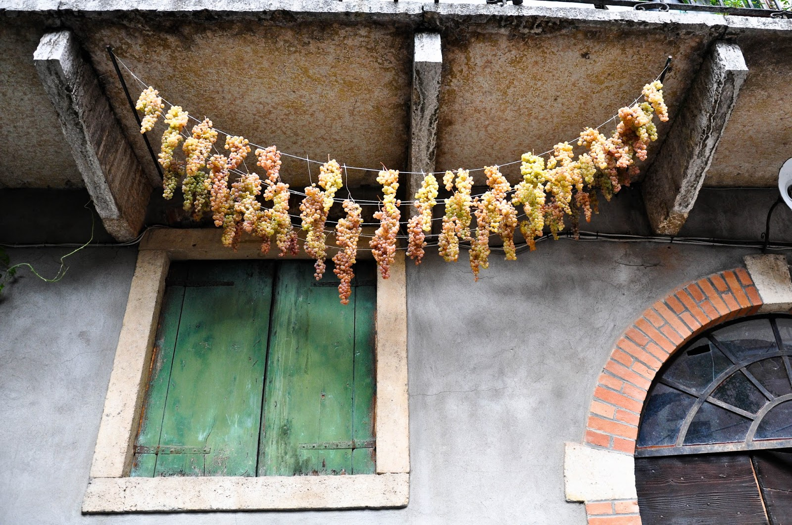 Bucnhes of grapes hanging underneath a balcony, Soave, Veneto, Italy