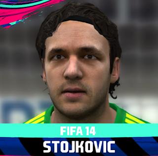FIFA 14 Faces Vladimir Stojković by Rale