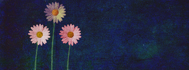 Dark Blue pink Flowers Facebook Timeline Cover