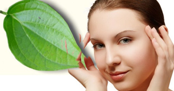 5 Benefits Betel Leaf for Face   acne