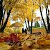 Este año el otoño comienza el 20 de marzo, bien temprano a la mañana