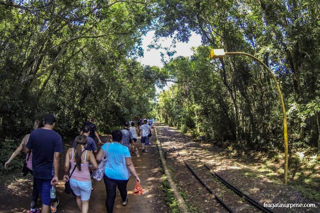 Trilha no lado argentino das cataratas do Iguaçu