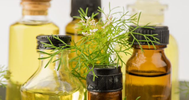 9 golden advantages of coriander oil .. most notably weight loss!