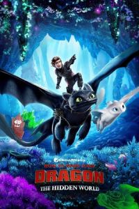How to Train Your Dragon 3 : The Hidden World (2019)