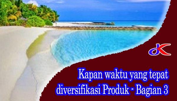Kapan waktu yang tepat diversifikasi produk || Bagian 3