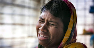 Rohingya murder: Amnesty asks for unofficial confession