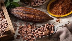 Cacao gran cantidad flavonoles