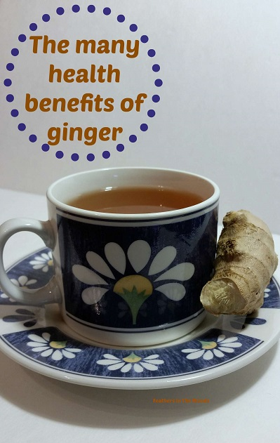 The many health benefits of Ginger