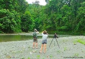 French tourists were enjoying birding, wildlife watching and riverwalk tour in Manokwari of West Papua.