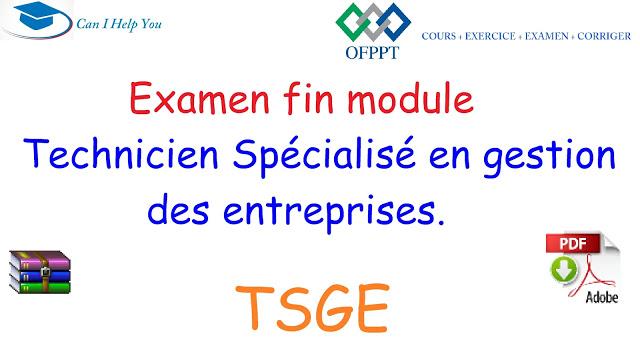 TSGE- Examen fin module - Technicien Spécialisé en gestion des entreprises.