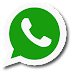WhatsApp Messenger v.2.16 Support Gingerbread (Android 2.3+)