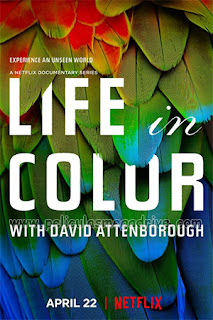 La vida a color con David Attenborough – Temporada 1 (2021) [Latino-Ingles] [1080P] [Hazroah]