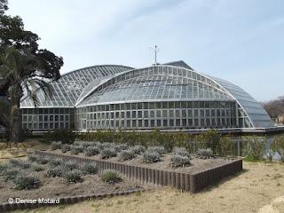 The Kyoto Botanical Gardens Conservatory, Japan