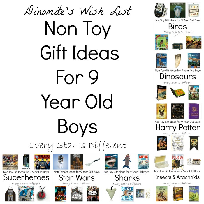 Non Toy Gift Ideas for 9 Year Old Boys