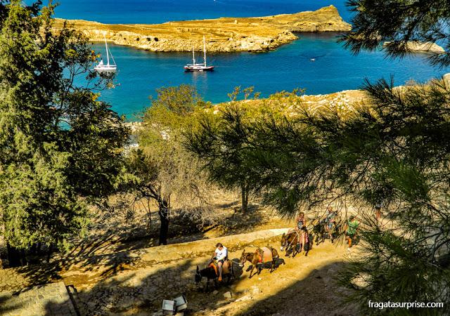 Burricos levam turistas à Acrópole de Lindos, na Grécia