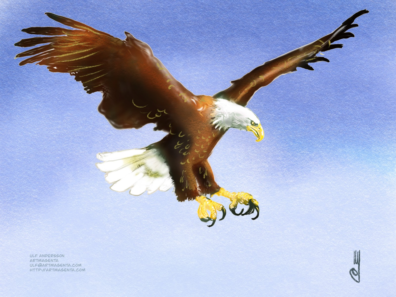 Birds: Eagles