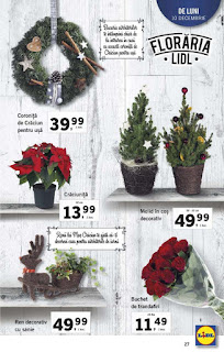 CATALOG LIDL 10 - 16 decembrie 2018 coronite de Craciun