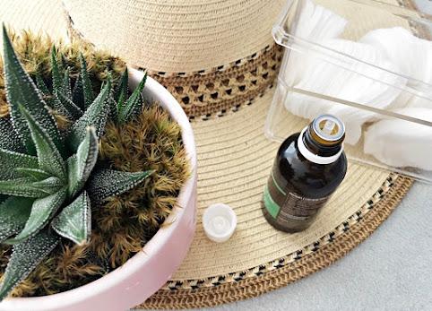 Kosmetyki z aloesem. Dlaczego to jest taki HIT? Aloes właściwości. Żel z aloesu, sok z aloesu, krem z aloesem.