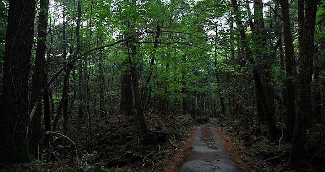 Ubasute, Legenda Menelantarkankan Ibu di Hutan