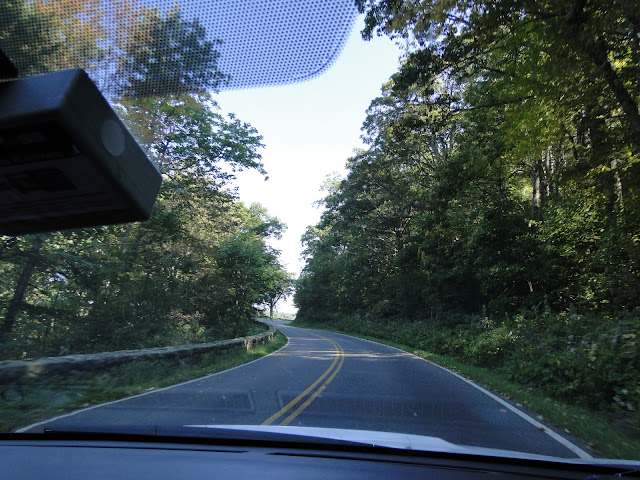driving along a road in summer