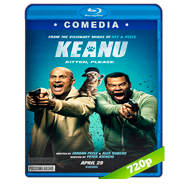 Keanu (2016) BRRip 720p Audio Dual Latino-Ingles