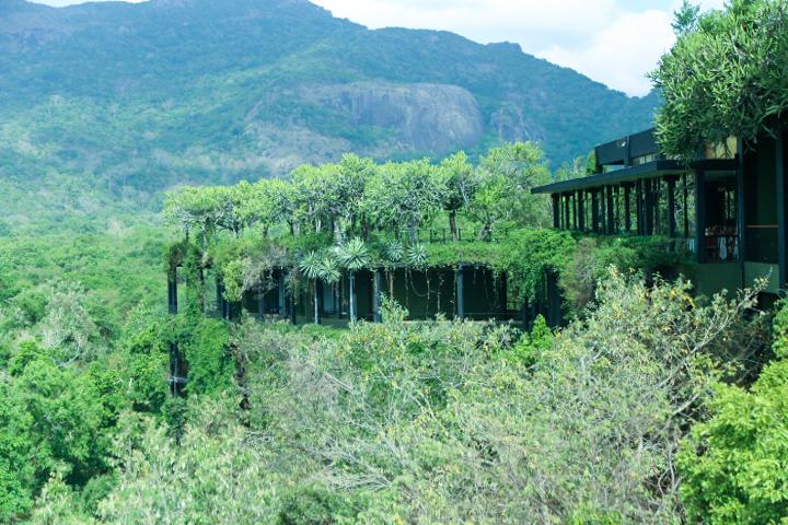 Hotel Kandalama Pictures Sri Lanka