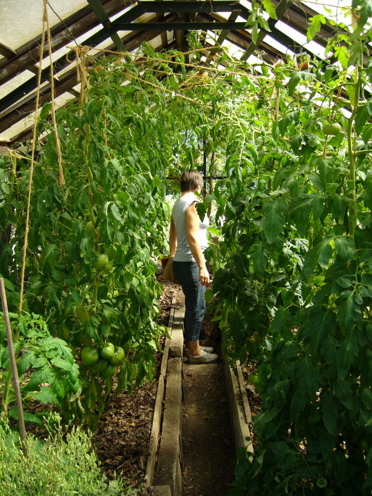 jardin potager comestible partager visite du jardin. Black Bedroom Furniture Sets. Home Design Ideas