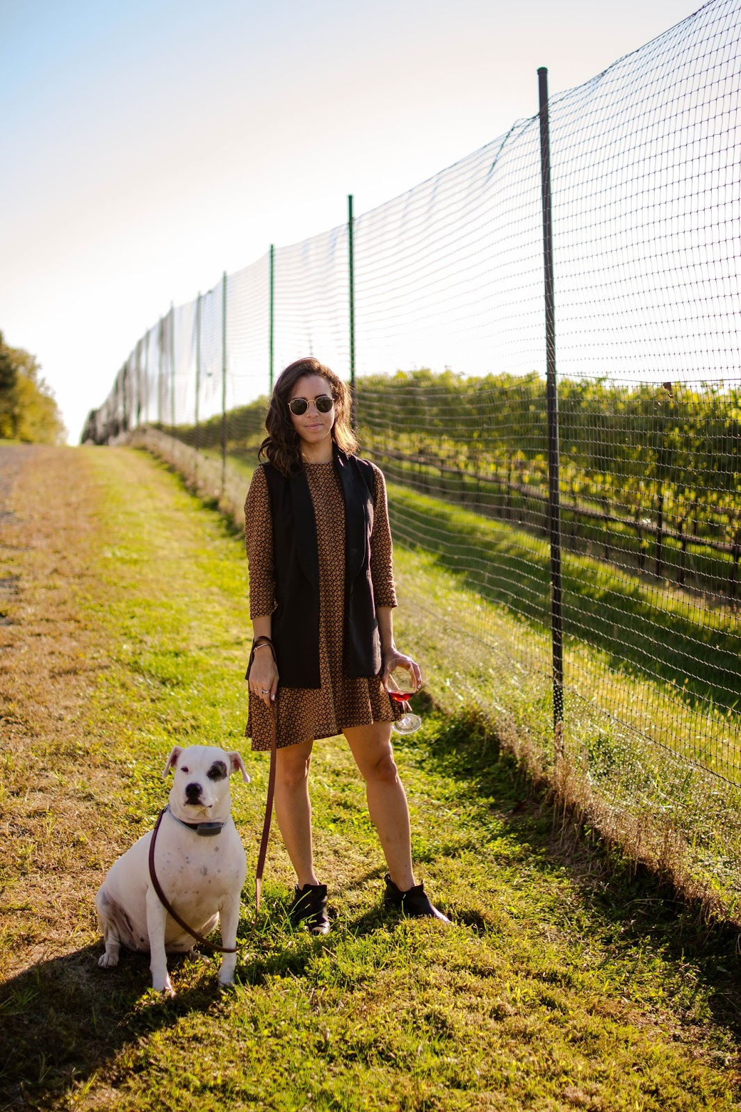 A casual chic fall winery outfit. | A.Viza Style | long black vest - swing dress - dc blogger - ragbone booties - fall layering