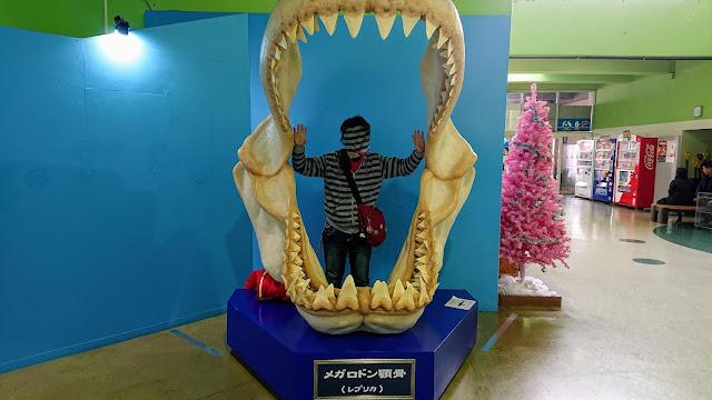 北海道 おたる水族館